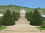 150704-Schloss_Wackerbarth_Radebeul-001