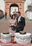 160402-001-Hochzeitstauben
