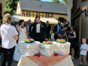 160624-023-Hochzeitstauben