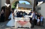 160624-024-Hochzeitstauben