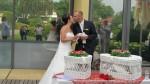 160625-027-Hochzeitstauben