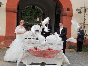 2017-015-HochzeitMitTaubenauflass