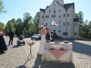 2017-020-HochzeitMitTaubenauflass