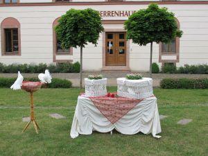 2017-037-HochzeitMitTaubenauflass