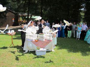 2017-049-HochzeitMitTaubenauflass
