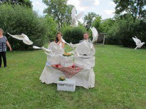 2017-054-HochzeitMitTaubenauflass