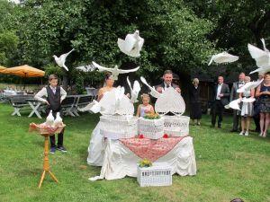 2017-059-HochzeitMitTaubenauflass
