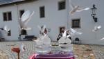 20200613-04-SchlossWildeck-Zschopau